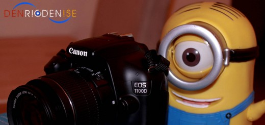 minion-photos