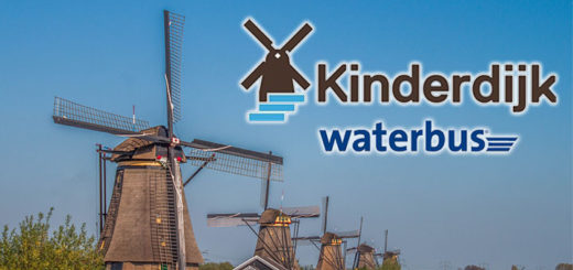 Trip To Kinderdijk plus waterbus ride to Rotterdam